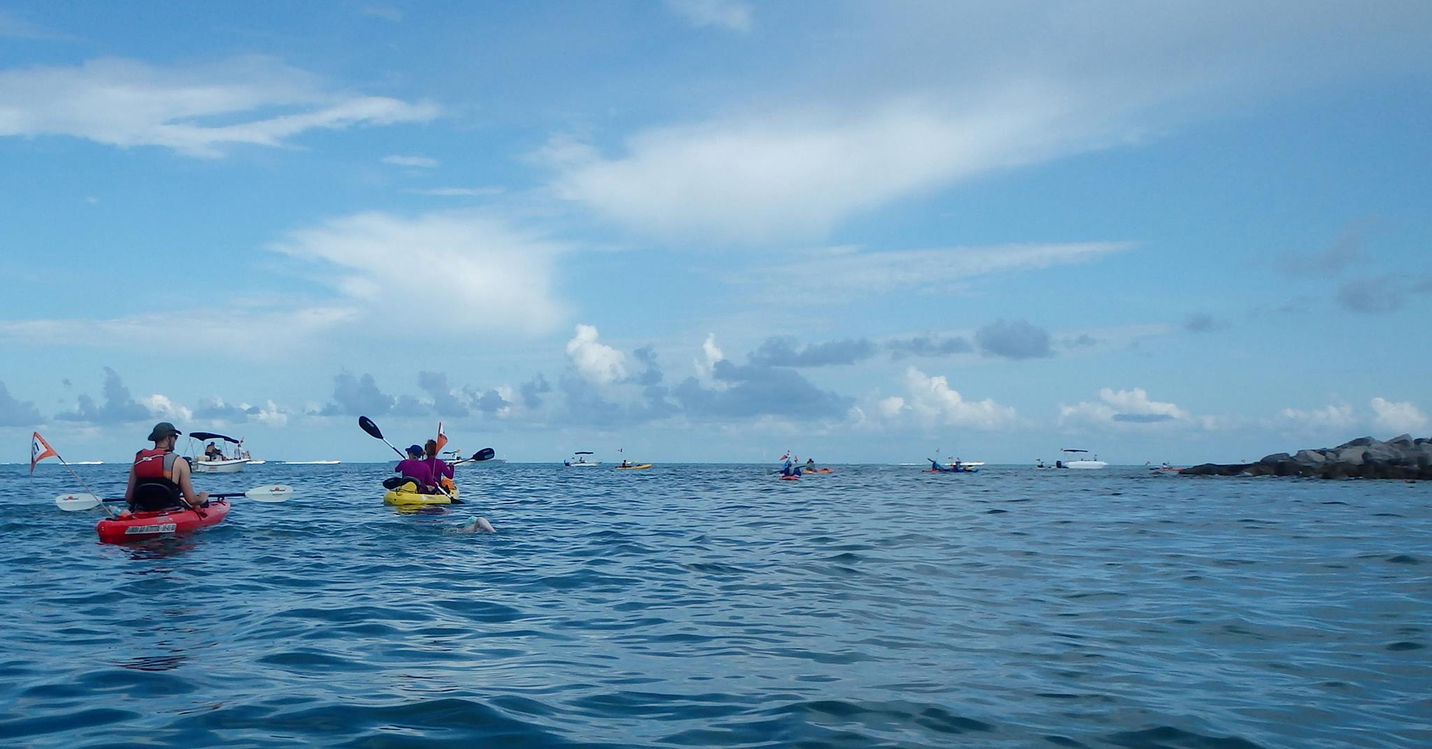 Paddlers and Swimmers